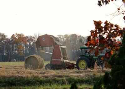 Lantbruk, höbalsremmar